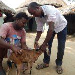 Biswajit Ruidas: A 'Doctor' in Demand