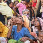 Newly arrived Rohingyas struggle to survive
