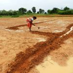 Local agro-advisory mechanism developed in Jharkhand