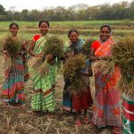 Smallholder farmers in Jharkhand come together to ensure safe food for a fair price
